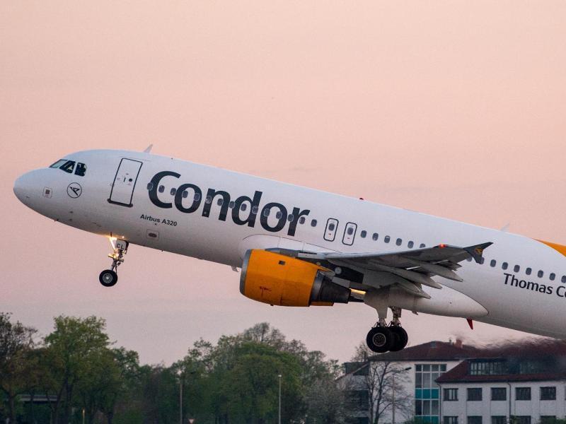Bild zu Flugzeug von Condor