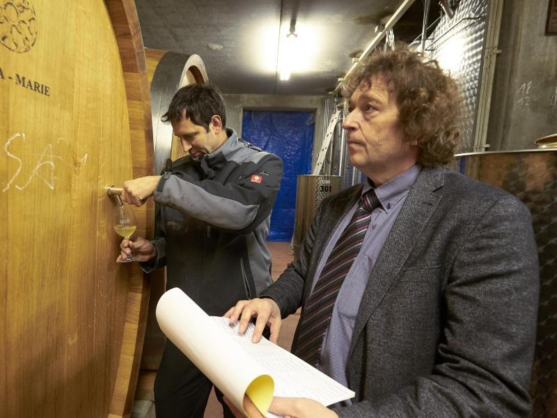 Bild zu Weinkontrolle