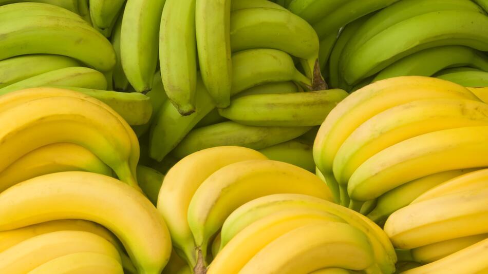 Kann ich grüne Bananen essen oder soll ich lieber warten bis sie gelb und reifer sind?