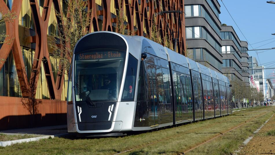 Concept of free local public transport