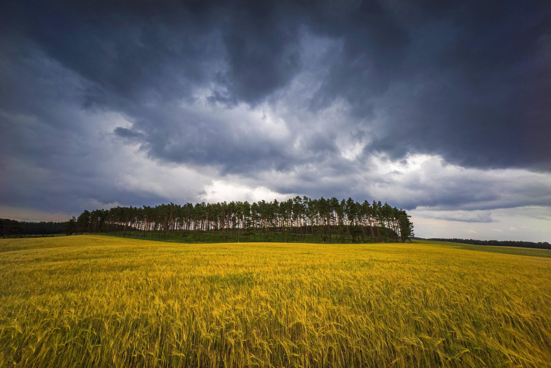 Bild zu Wetter, aktuell, Deutschland