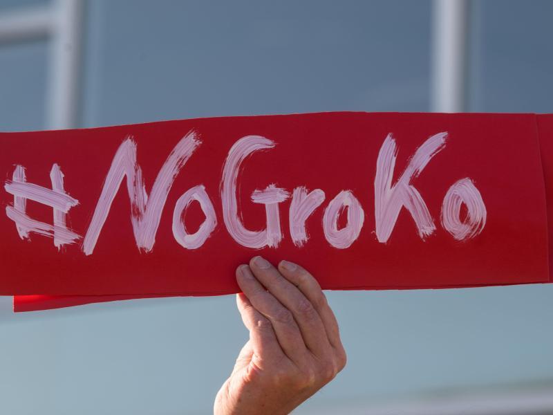 Bild zu GroKo-Gegner