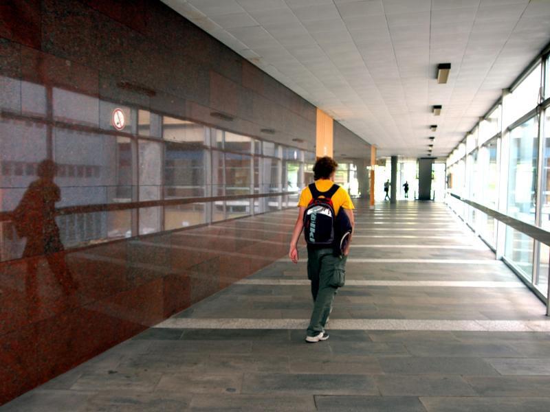 Bild zu Karriere trotz Studienabbruch