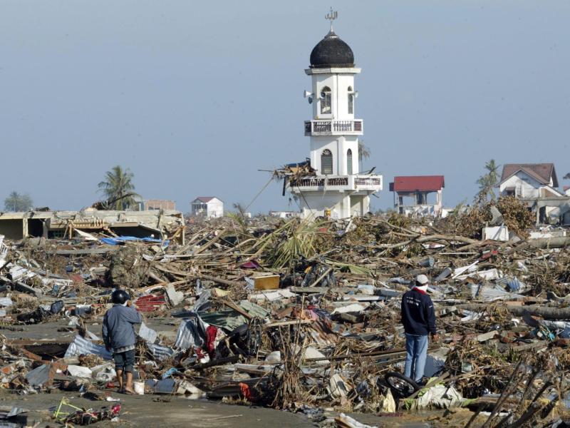 Bild zu Tsunami 2004