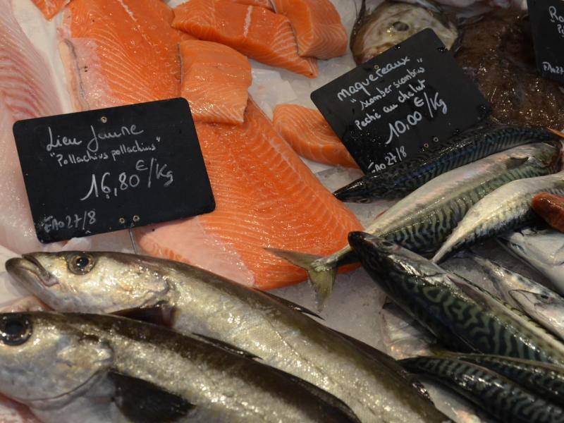 Bild zu Fisch