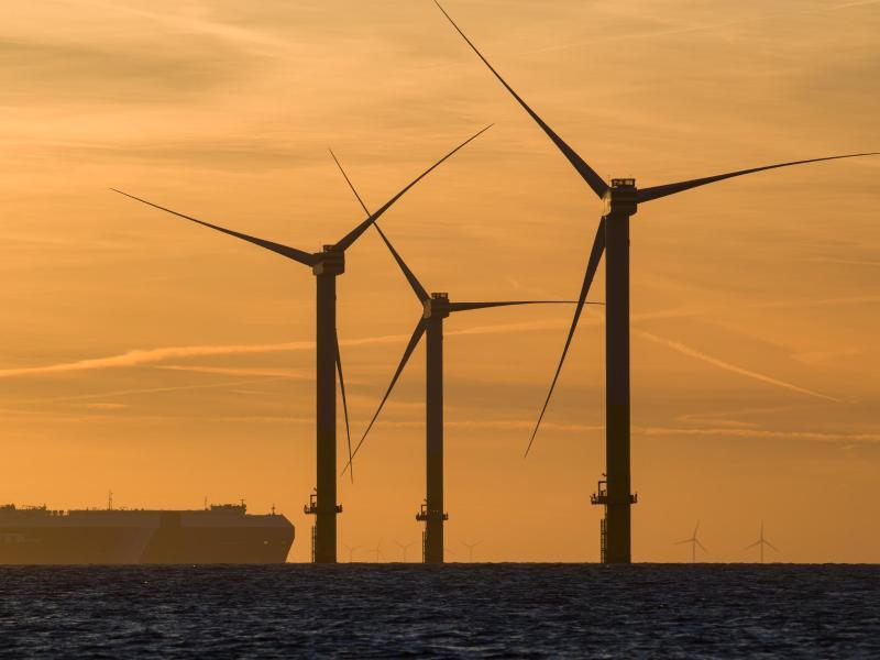 Bild zu Strom aus Windkraft
