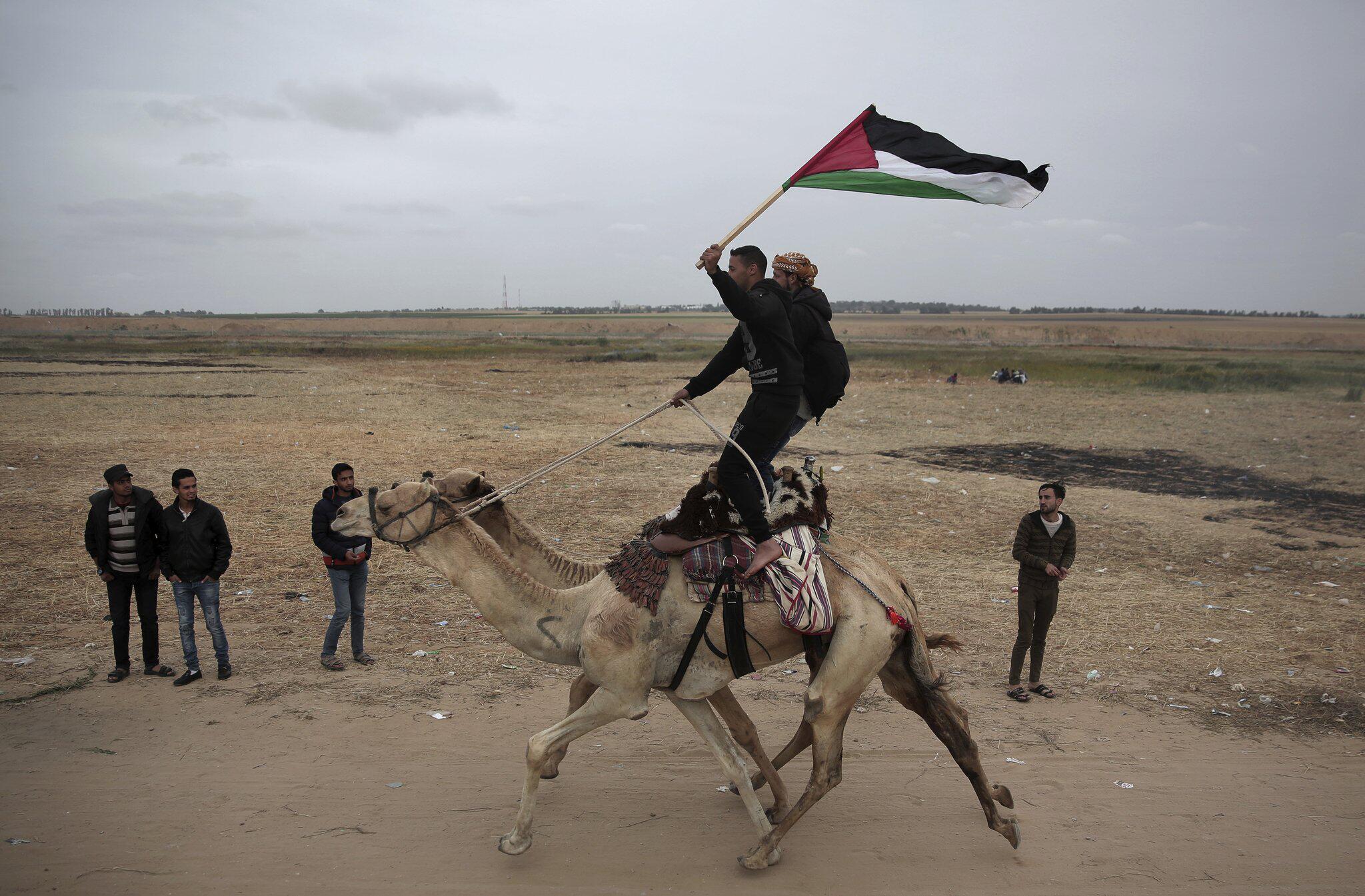 Bild zu Proteste an israelischer Grenze im Gazastreifen