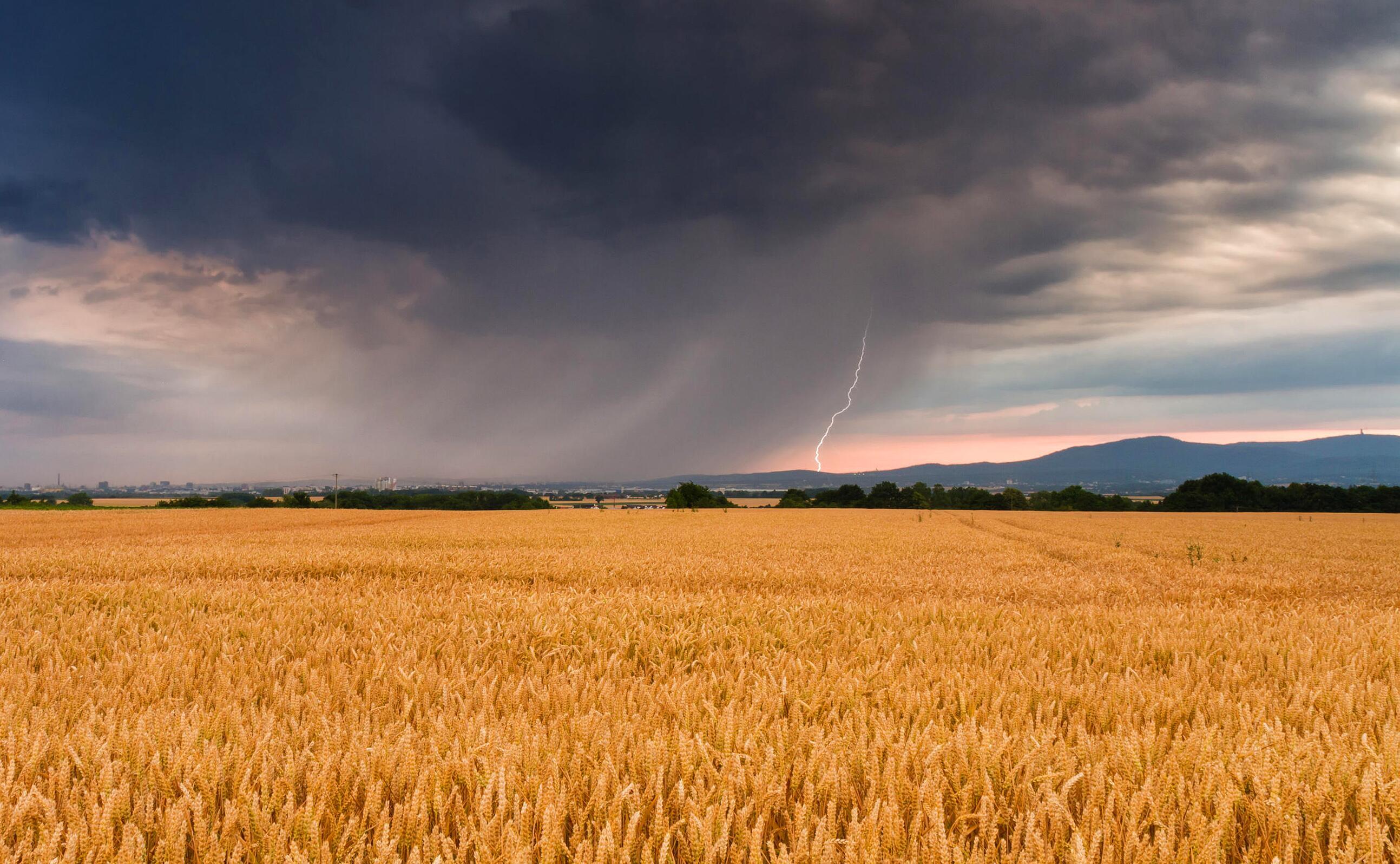 Bild zu Wetter aktuell