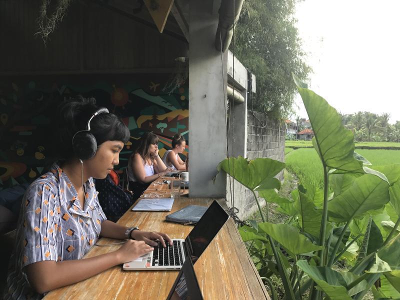 Bild zu Arbeiten auf Bali
