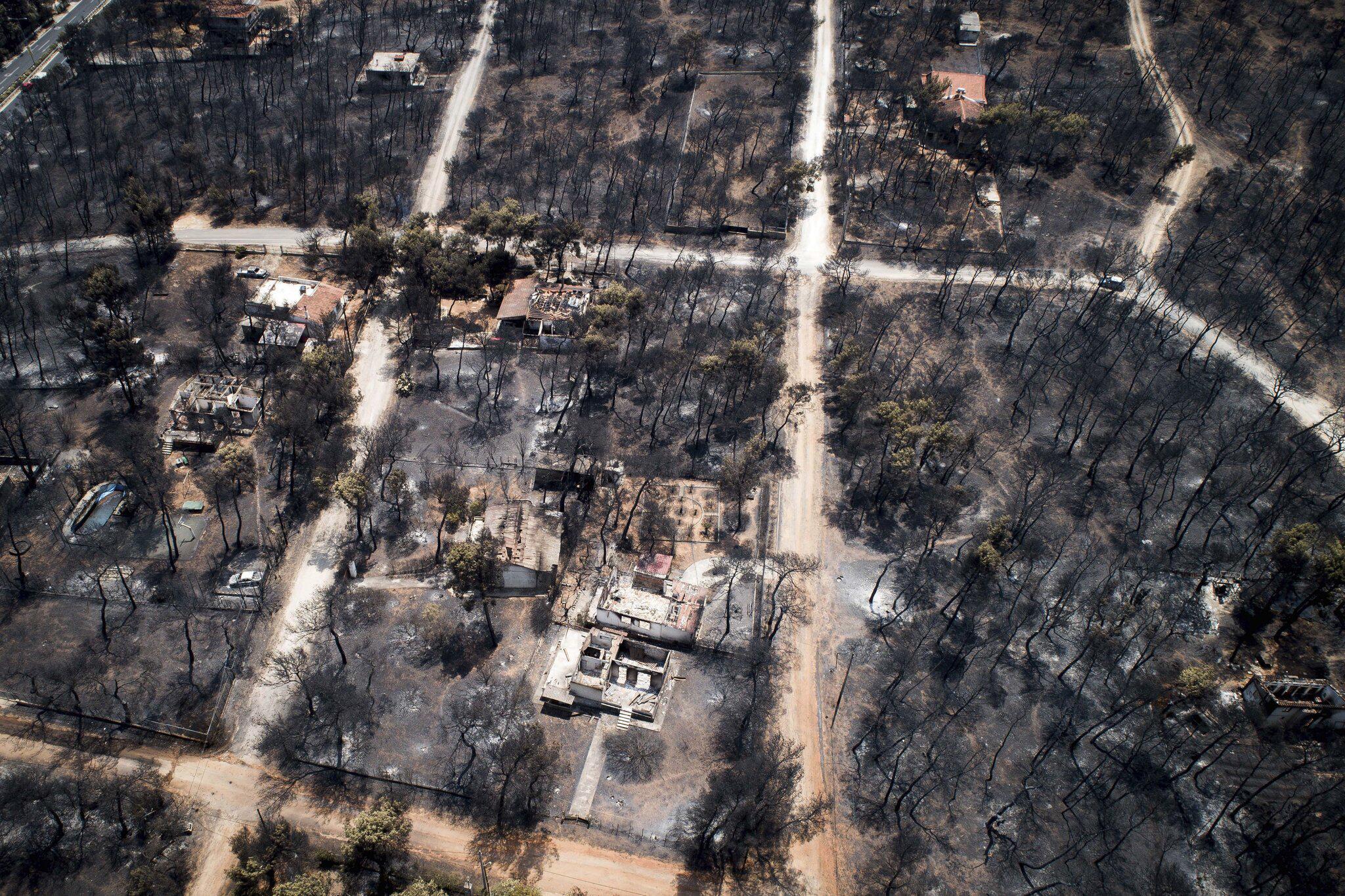 Bild zu Waldbrände in Griechenland