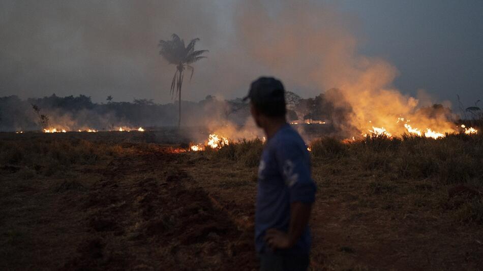 Waldbrände am Amazonas