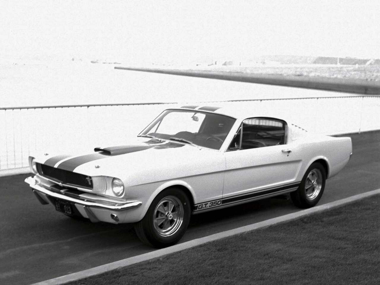 Bild zu Shelby GT350