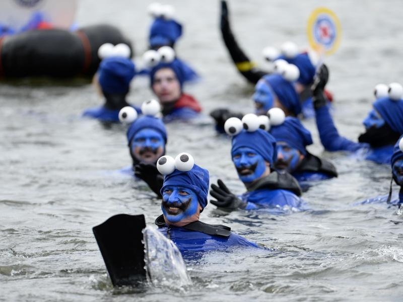 Bild zu 47. Donauschwimmen