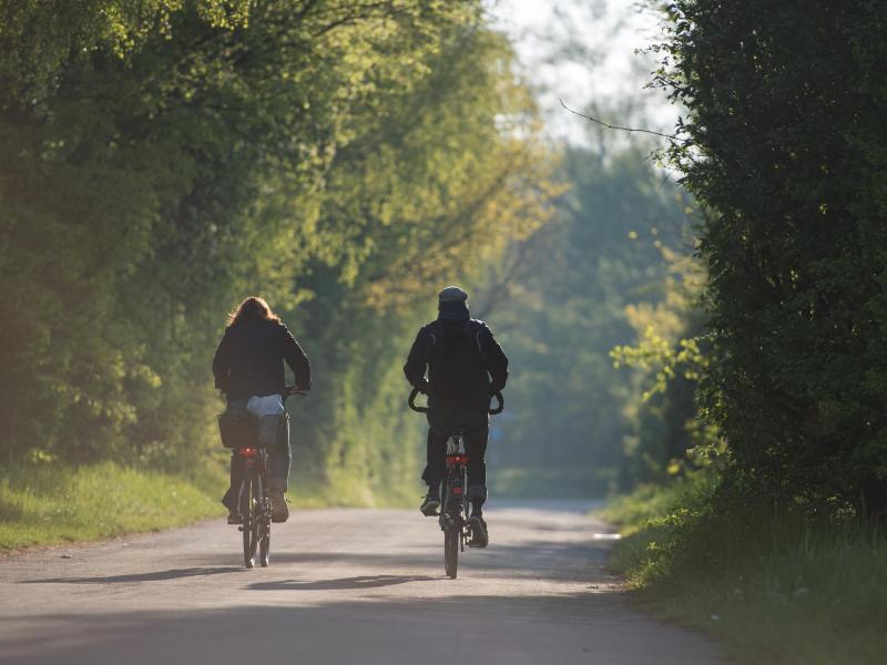 Bild zu Fahrradfahrer im Morgenlicht