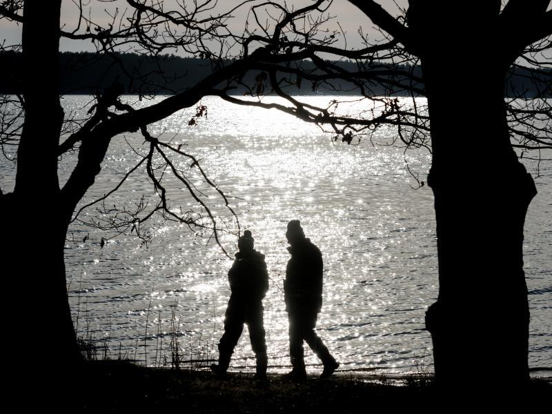 Bild zu Spaziergänger im Winter