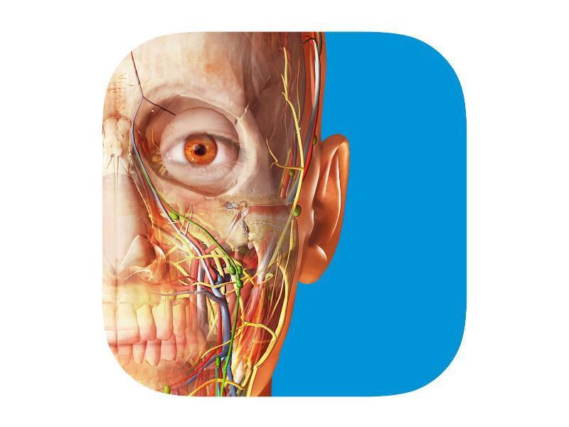 Bild zu «Atlas der menschlichen Anatomie»