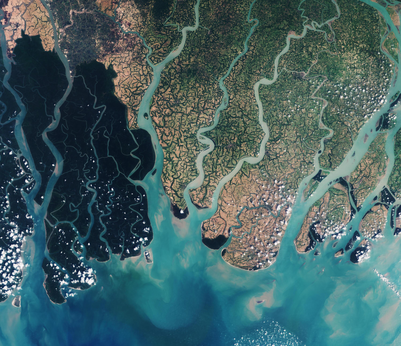 Bild zu Sundarbans