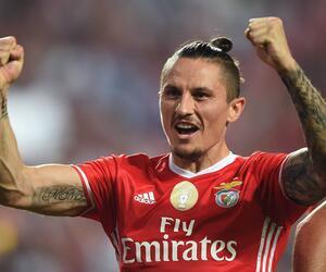 Ljubomir Fejsa, Benfica Lissabon, Meister