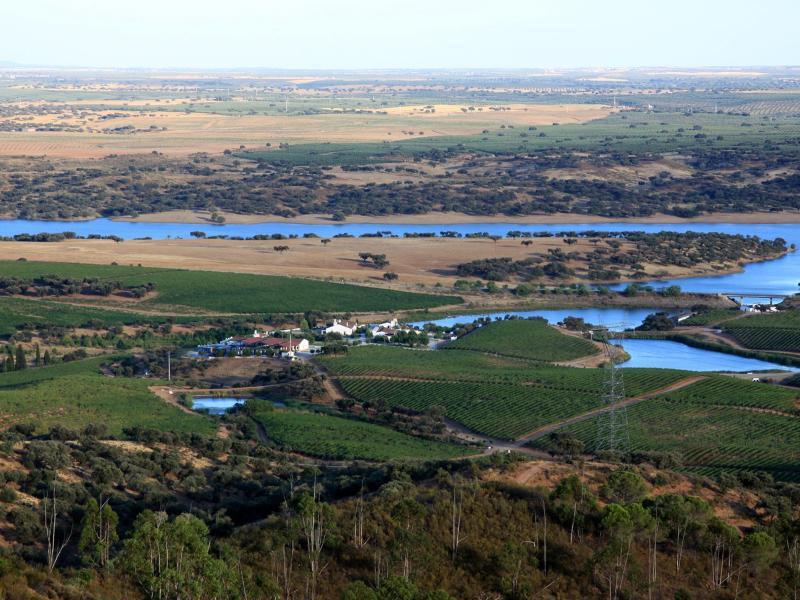 Bild zu Der Alqueva-Stausee in Portugal