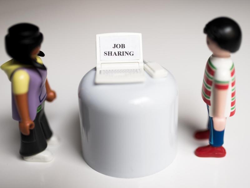 Bild zu Gemeinsamer Job