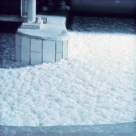 Bild zu Baumwollfasern