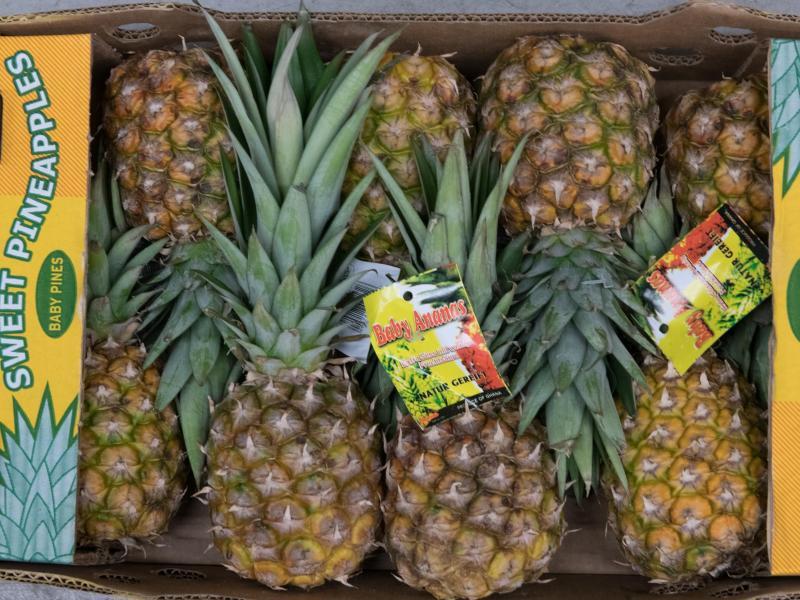 Bild zu Mini-Ananas