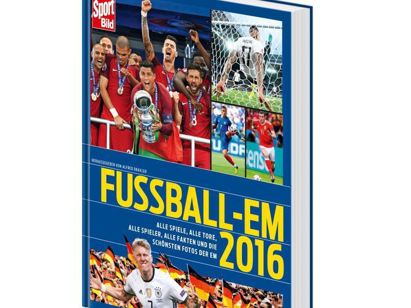 "Bild zu ""Fußball-EM 2016"""