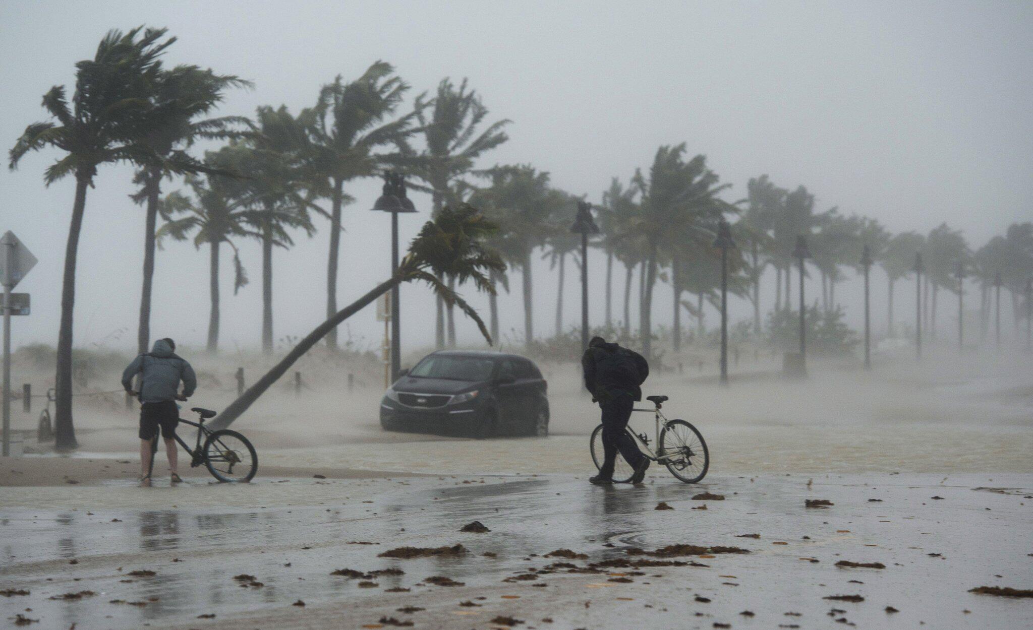 Bild zu Hurrikan Irma