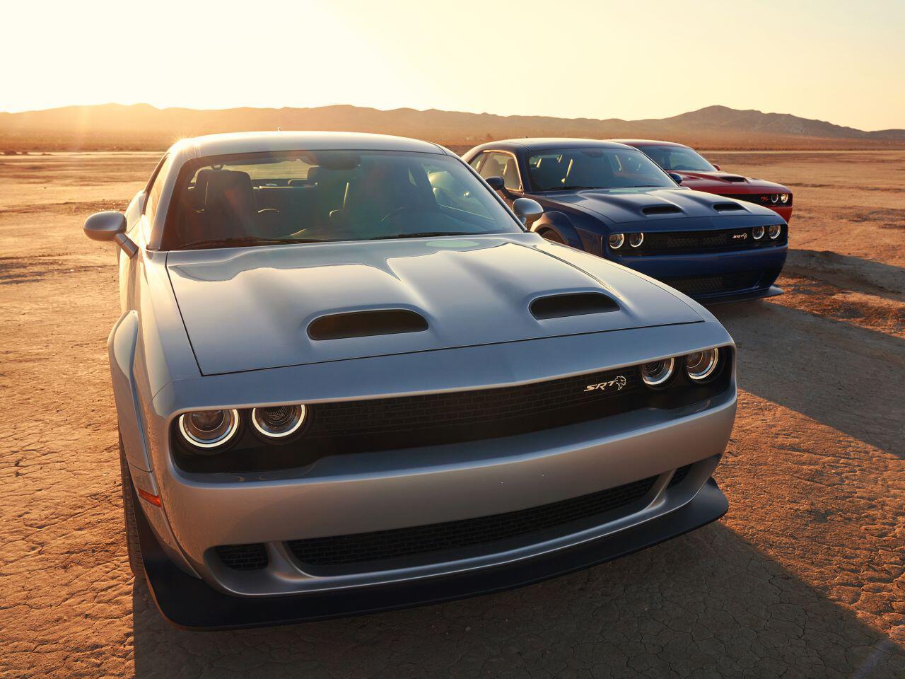 Bild zu Dodge Challenger