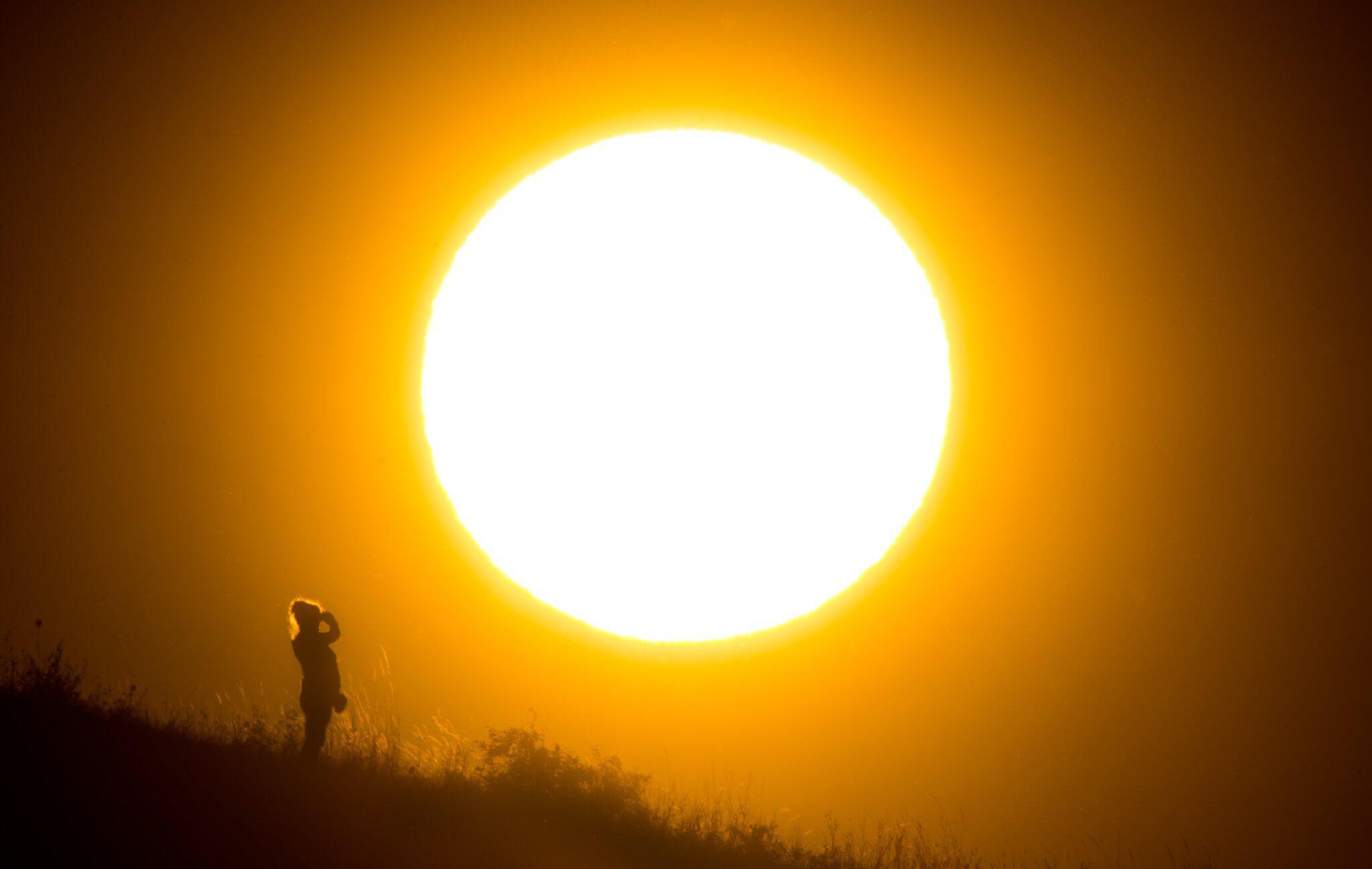 Bild zu Hitzesommer