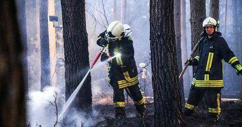 Waldbrand bei Oranienburg