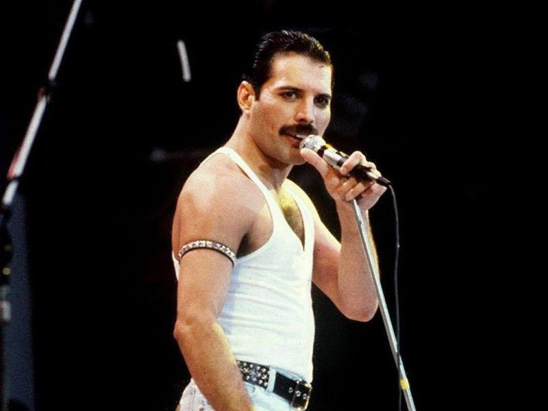 Bild zu Freddie Mercury