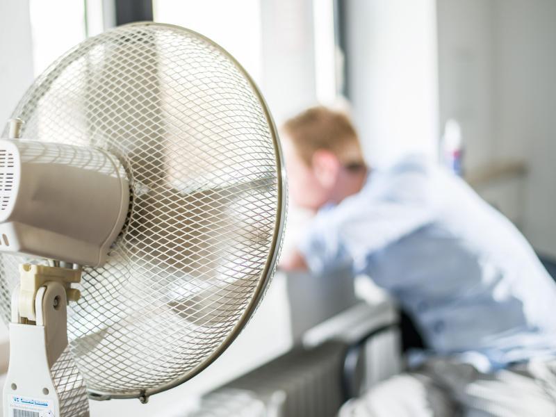 Bild zu Hitze im Büro