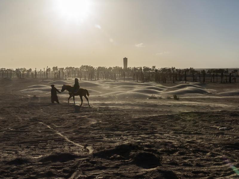 Bild zu Urlaubsland Tunesien