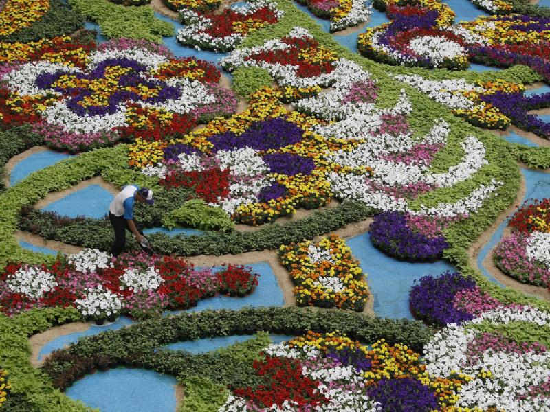 Bild zu Festival of the Flowers in Medellin