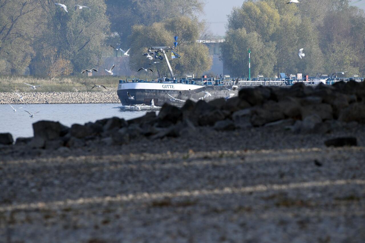 Bild zu Niedrigwasser im Rhein lässt auch Tankstellen leerlaufen