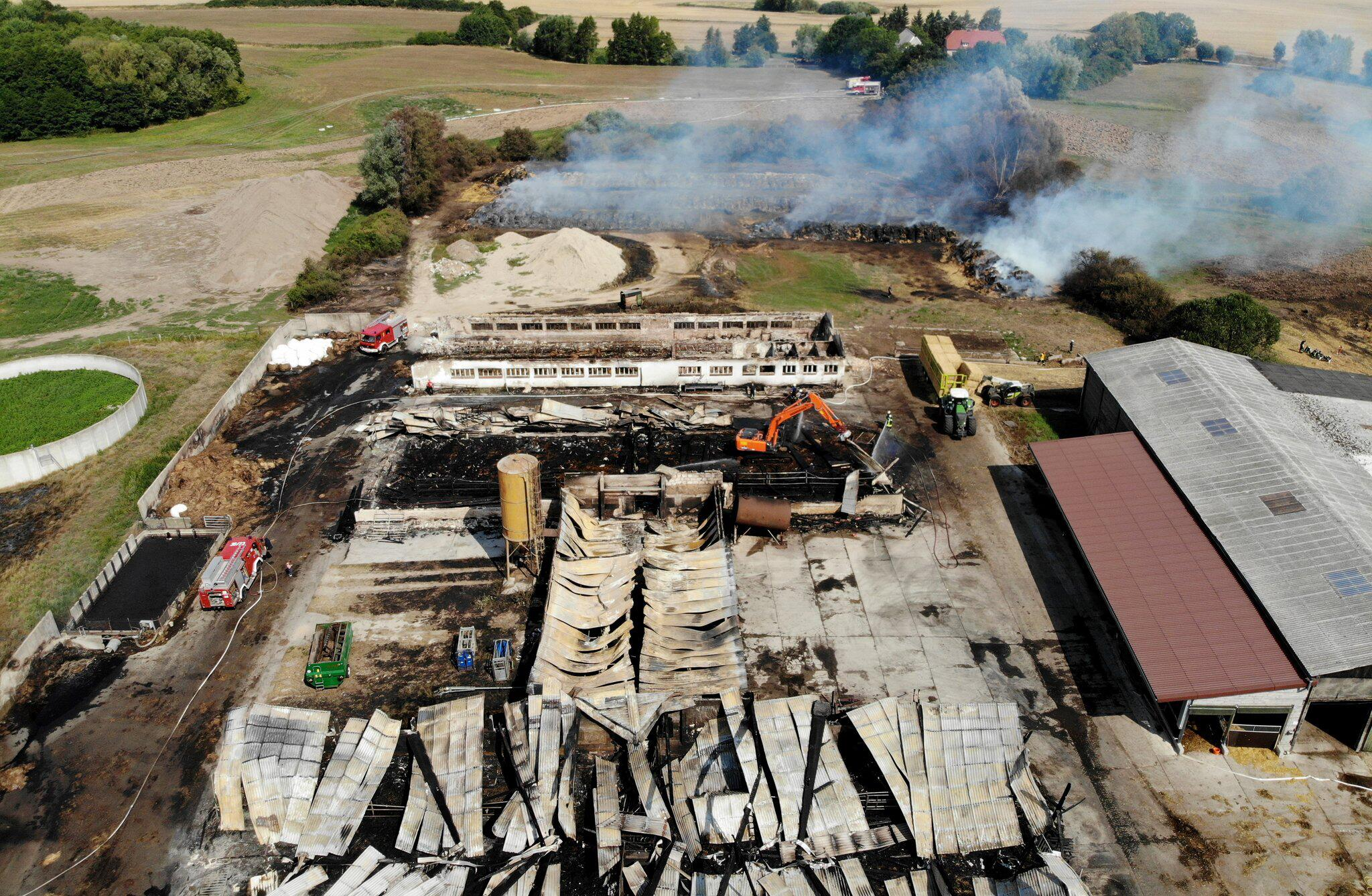 Bild zu Großbrand in Agrarbetrieb