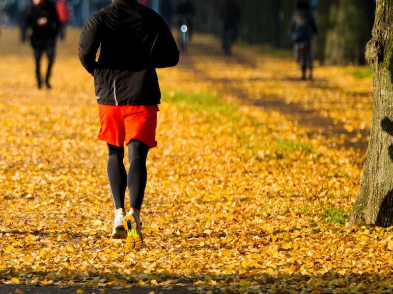 Bild zu Sport im Herbst