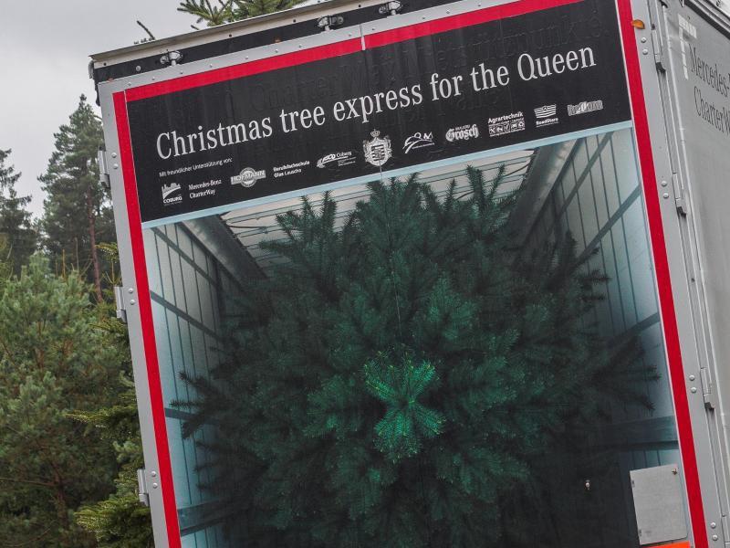 Bild zu Coburger Weihnachtsbaum für die Queen