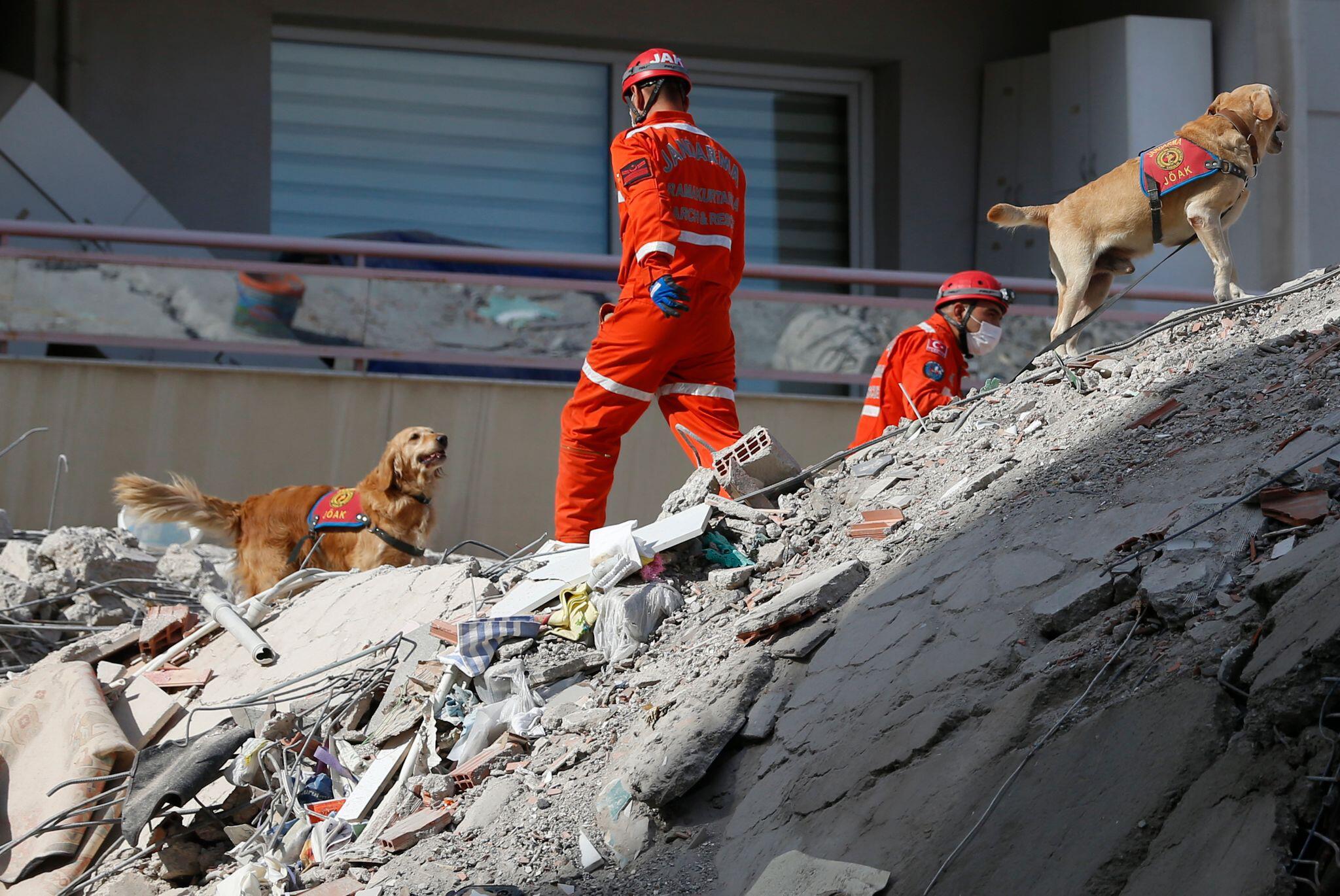Bild zu Erdbeben in der Türkei
