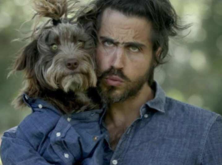 Bild zu Hunde und Besitzer