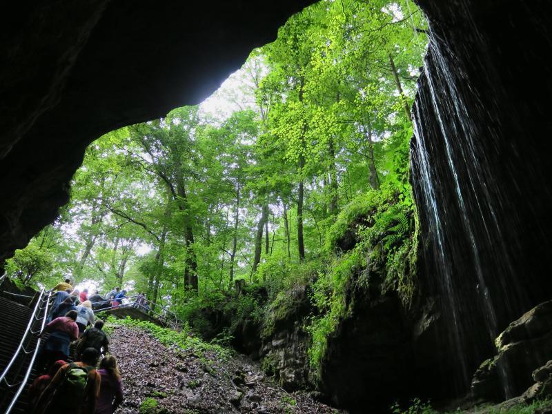 Bild zu Eingang zur Mammoth Cave