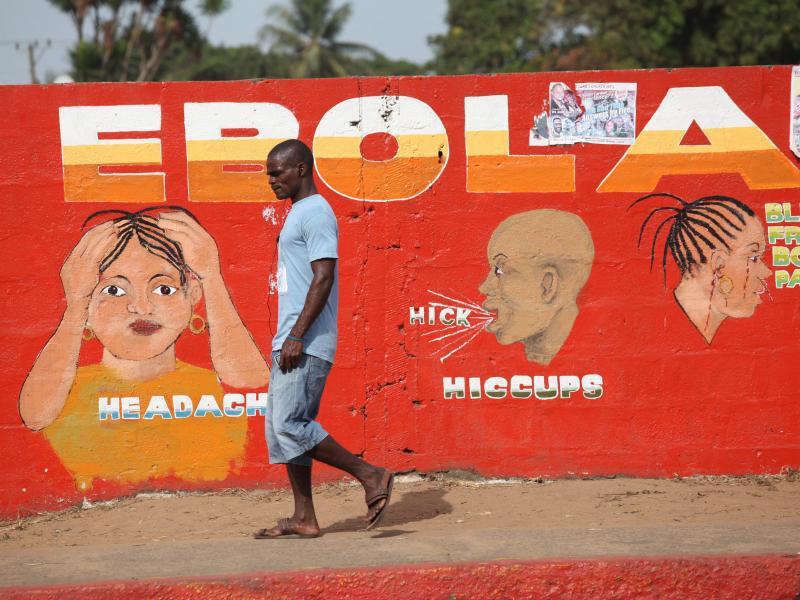Bild zu Ebola