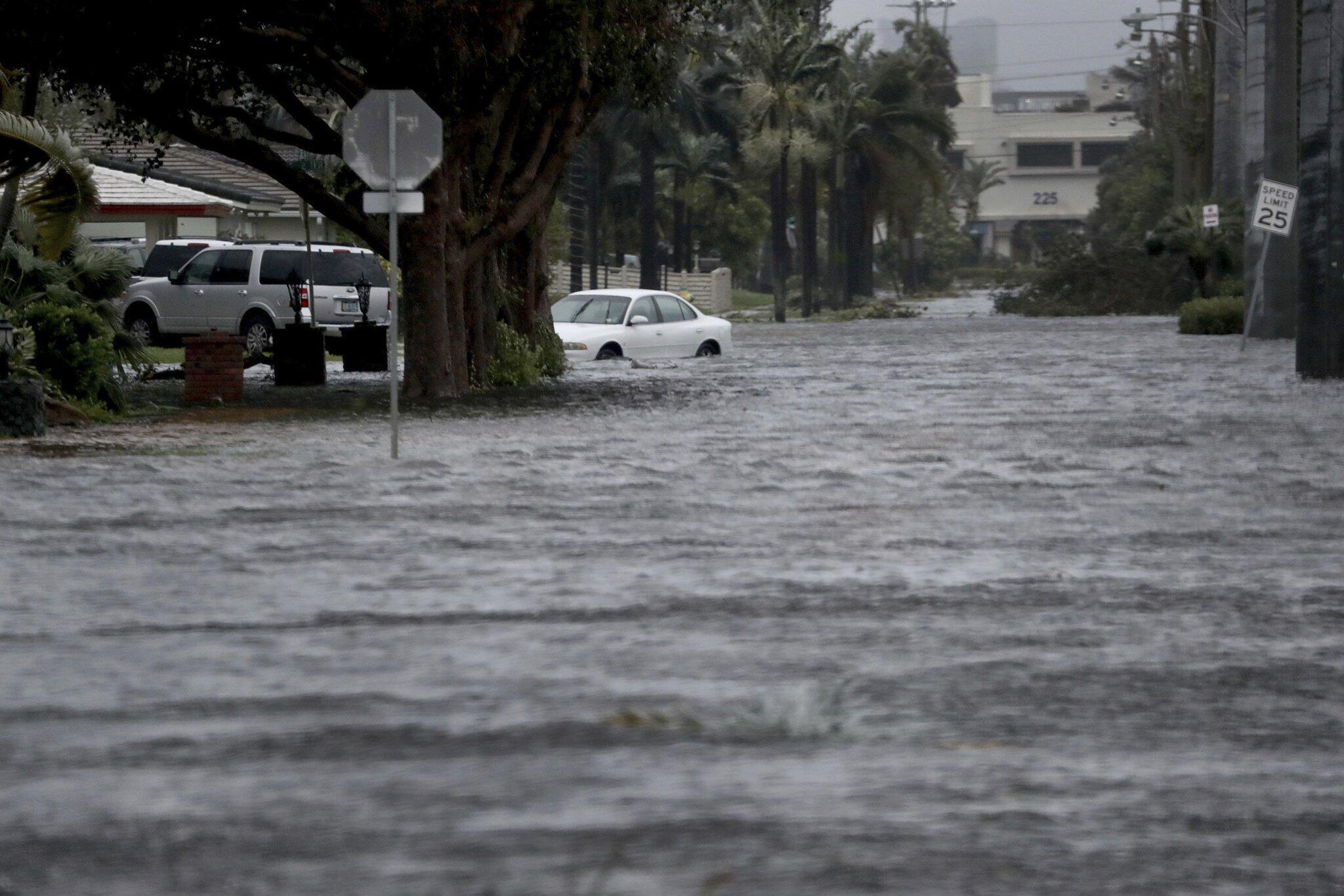 Bild zu Hurrikan Irma Florida