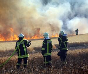 Getreidefeld in Rostock brennt
