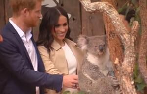 Prinz Harry, Herzogin Meghan, Zoobesuch, Australien,