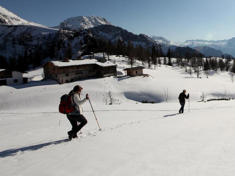 Bild zu Bergwanderer in den Alpen
