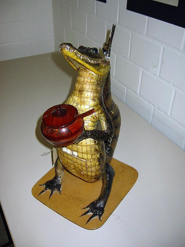 Bild zu Krokodil mit Senf