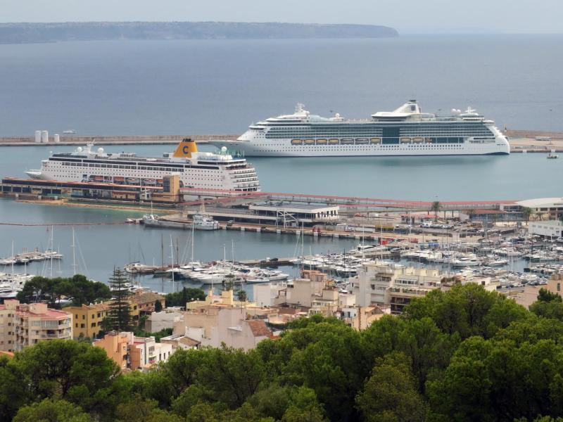 Bild zu Hafen von Palma de Mallorca