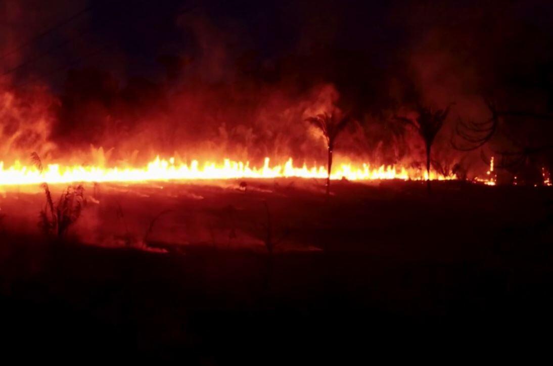 Bild zu Waldbrand
